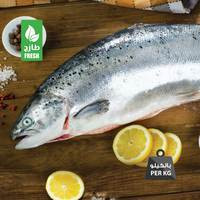Fresh salmon fish Norway (2 - 3 Kg)