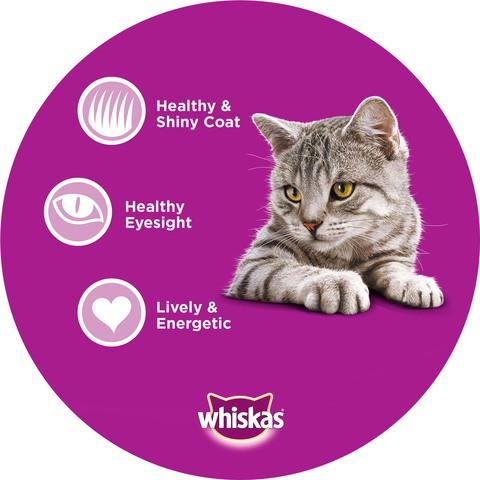 Whiskas-Ocean-Fish-Dry-Cat-Food-Adult-1+-years-1.2-Kg