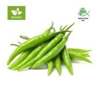Organic chili - tray 300 g