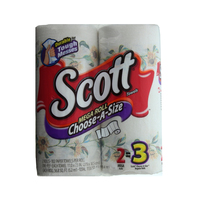 Scott Towel 2 Mega Rolls