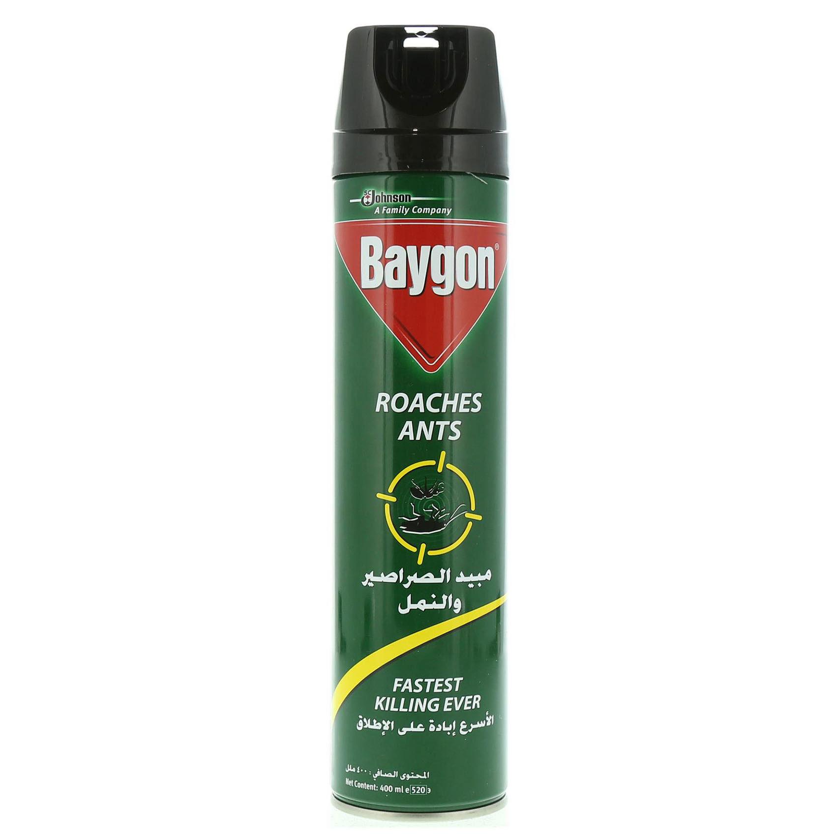 BAYGON CIK KILL&DSINF400ML