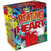John Adams Gross Science Beating Heart Kit