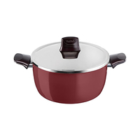 Tefal Pleasure Stewpot With Lid 28CM