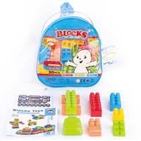 Blocks Play & Learn 50Pcs