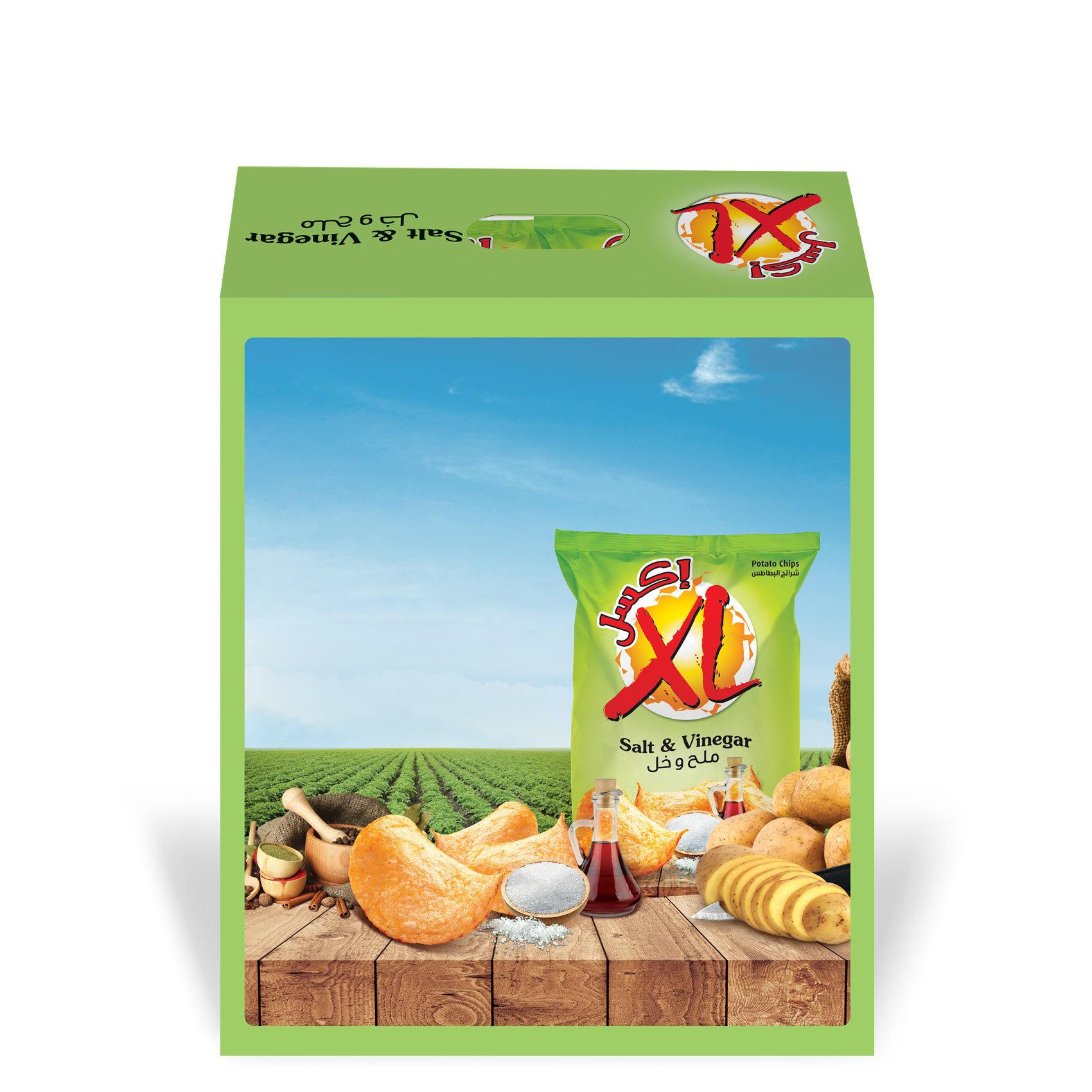 XL CHIPS SALT&VINEGAR DUPLEX 26GX14