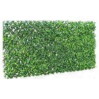 Willow Trellis Hedge Green 1X2M