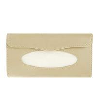 Tissue Case For Sunvisor