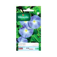 Vilmorin Ipomea Geant Blue