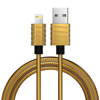 iWalk Lightning Cable CST016I Metallic Gold