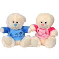 Cuddles Bear Cool 25-30Cm