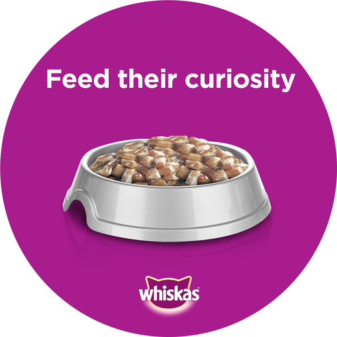 WHISKAS®-In-Jelly-with-Ocean-Fish-Wet-Cat-Food-Pouch-85g