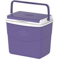 Cosmoplast Picnic Icebox 20L