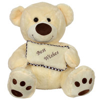 Cuddles Bear Pillow 60Cm