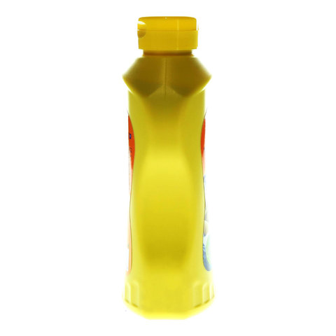 American-Garden-U.S-Mustard-397g