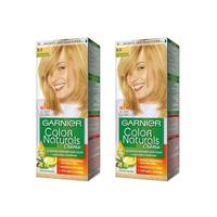 Garnier Color Hair Light Golden Blonde No.9.3 2 Pieces
