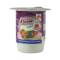 Al Ain Fruits Of The Forest Yoghurt 125g