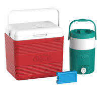 Cosmo Icebox 18L Mini Picnic Set069