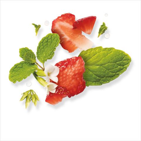 Herbal-Essences-Bio:Renew-Clean-White-Strawberry-&-Sweet-Mint-Shampoo-400-ml