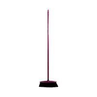 Parex Indoor Broom With Handle
