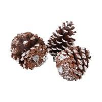 Christmas Nature Pinecone 10X7 Cm 3 Peices