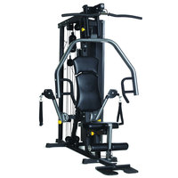 Horizon Home Multigym