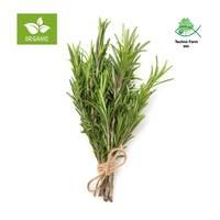 Organic rosemary - tray 50 g