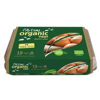 Orvital Organic Eggs x15