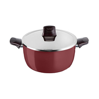 Tefal Pleasure Stewpot With Lid 22CM