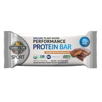 Garden of Life Organic Protein Bar Peanut Butter Chocolate 75g
