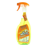 Mr Muscle Windex Lime Advanced Glass Cleaner 750ml