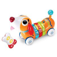 Winfun - Remote control rainbow pup set