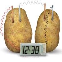 4M Kidz Labs Potato Clock