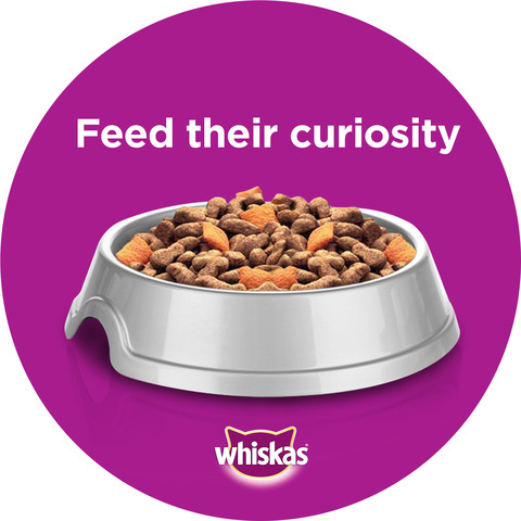 WHISKAS®-Hairball-Control-with-Chicken-&-Tuna-Dry-Cat-Food-Adult-1+-Years-1.1-Kg