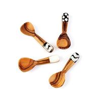 Wooden Spice Spoon B06