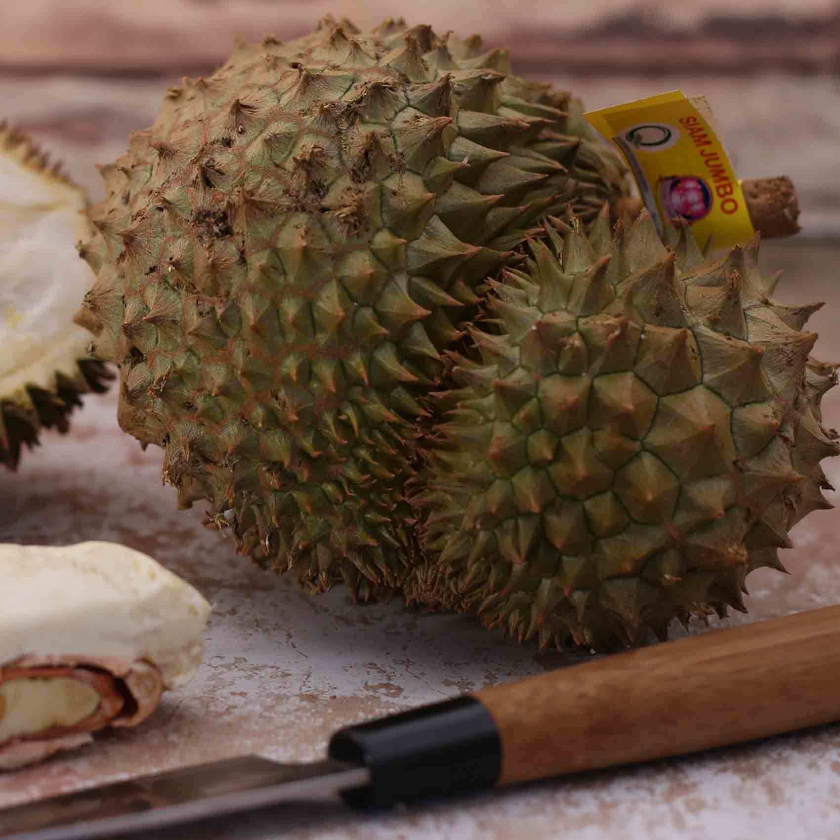 DURIAN PP