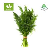 Organic dill - tray 100 g