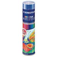 Staedtler Cylinder Coloring Pencil X24