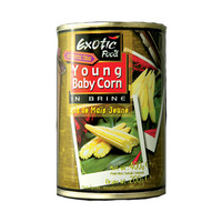 Extotic Food Baby Corn 400GR