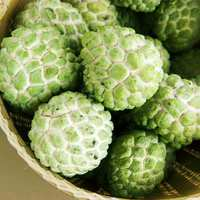 Thai Custard Apple