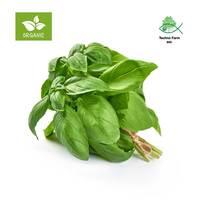 Organic italian basil - tray 80 g