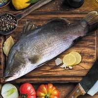 Fresh Red Sea Sea Bass