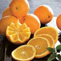 Valencia Oranges 4Kg