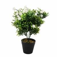 Happy Plant With Pot 38 Cm Black