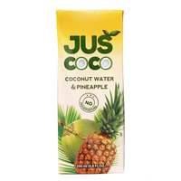 Juscoco Coconut Water & Pineapple 200ml