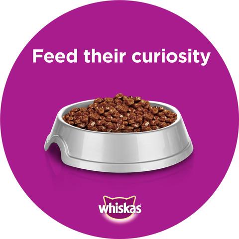 WHISKAS®-Tender-Bites®-Beef-in-Gravy-Wet-Cat-Food-Pouch-85g