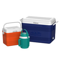 Cosmo Combo Set Deluxe 46L 3Pc 50060