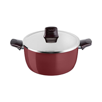 Tefal Pleasure Stewpot With Lid 20CM