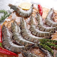Shrimps U10 Fresh
