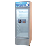 Super General 250 Liters Fridge D/F SGSC298