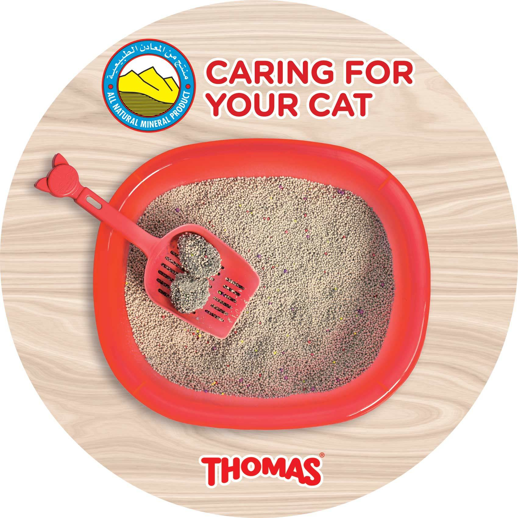 THOMAS CAT LITTER NON CLUMPING 10KG